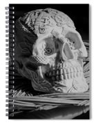 Celtic Skulls Symbolic Pathway To The Other World Spiral Notebook