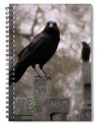 Cemetery Crows Spiral Notebook