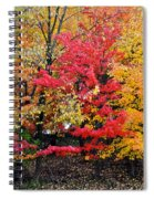 Center Of Attention Spiral Notebook