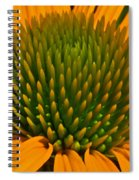 Center  Of Cone Flower Spiral Notebook