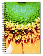 Center Spiral Notebook