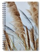 Central Coast Pampas Grass II Spiral Notebook