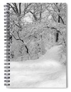 Central Park Dressed Up In White Spiral Notebook