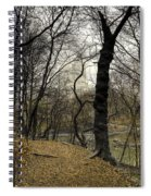 Central Park Rainy Day Number Three Spiral Notebook