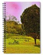 Central Park Sunday Spiral Notebook