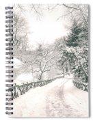 Central Park Winter Landscape Spiral Notebook