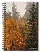 Central Park Yukon Spiral Notebook
