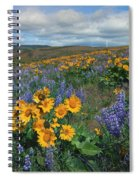 Central Washington Spring Spiral Notebook