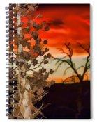Century Soldier Sunset Spiral Notebook