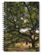 Century Tree Spiral Notebook