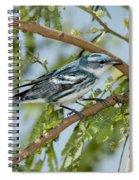Cerulean Warbler Spiral Notebook