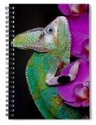 Chamaeleon Spiral Notebook