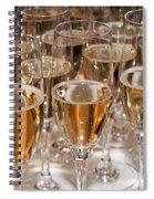 Champagne 01 Spiral Notebook