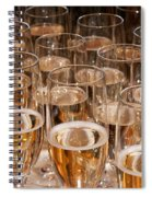Champagne 02 Spiral Notebook