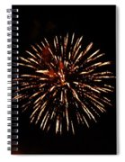 Champagne Spiral Notebook