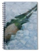 Champagne On Ice Spiral Notebook