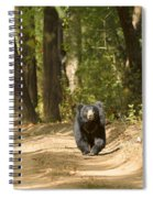 Chance Encounter With The Hairy One Spiral Notebook