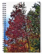 Changing Colors Spiral Notebook