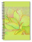 Chantilly Lace Spiral Notebook