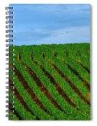 Chardonnay Sky 17990 Spiral Notebook