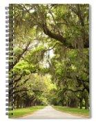 Charleston Avenue Of Oaks Spiral Notebook