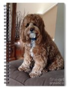 Charley At Home Spiral Notebook