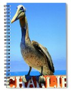Charlie The Pelican Spiral Notebook