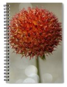 Charming Weed Spiral Notebook