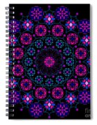Chartres 2013 Spiral Notebook