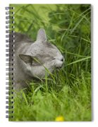 Chartreux Cat And Grass Spiral Notebook