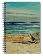 Chasing The Seagull Spiral Notebook