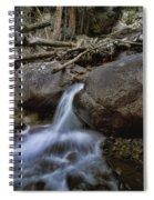 Chasm Falls Spiral Notebook