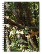 Chattahoochee River Trails Spiral Notebook