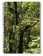 Chattahoochee Riverwalk Spiral Notebook