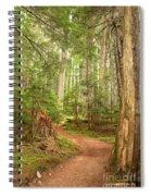 Cheakamus Lake Path Spiral Notebook