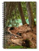 Cheakamus Lake Rainforest - British Columbia Spiral Notebook
