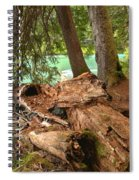 Cheakamus Lake Shoreline Spiral Notebook