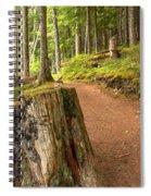 Cheakamus Lake Trail Spiral Notebook