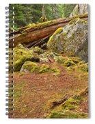 Cheakamus Rainforest Debris Spiral Notebook