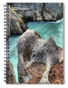 Cheakamus River Channel Spiral Notebook