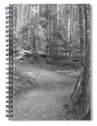 Cheakamus Trail In Black And White Spiral Notebook