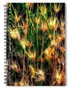 Cheat Grass 15750 Spiral Notebook