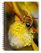 Check Out My Beehind Spiral Notebook