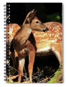 Checking The Back Trail Spiral Notebook