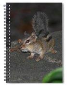 Cheeky Spiral Notebook