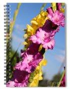 Cheerful Gladiolus Spiral Notebook