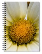 Cheery Daisy  Spiral Notebook