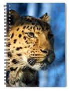Cheetah Acinonyx Jubatus Spiral Notebook
