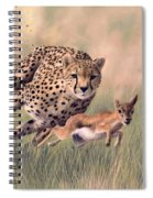 Cheetah And Gazelle Painting Spiral Notebook