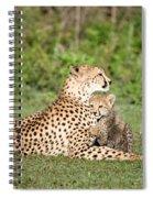 Cheetah Cub Acinonyx Jubatus Playing Spiral Notebook